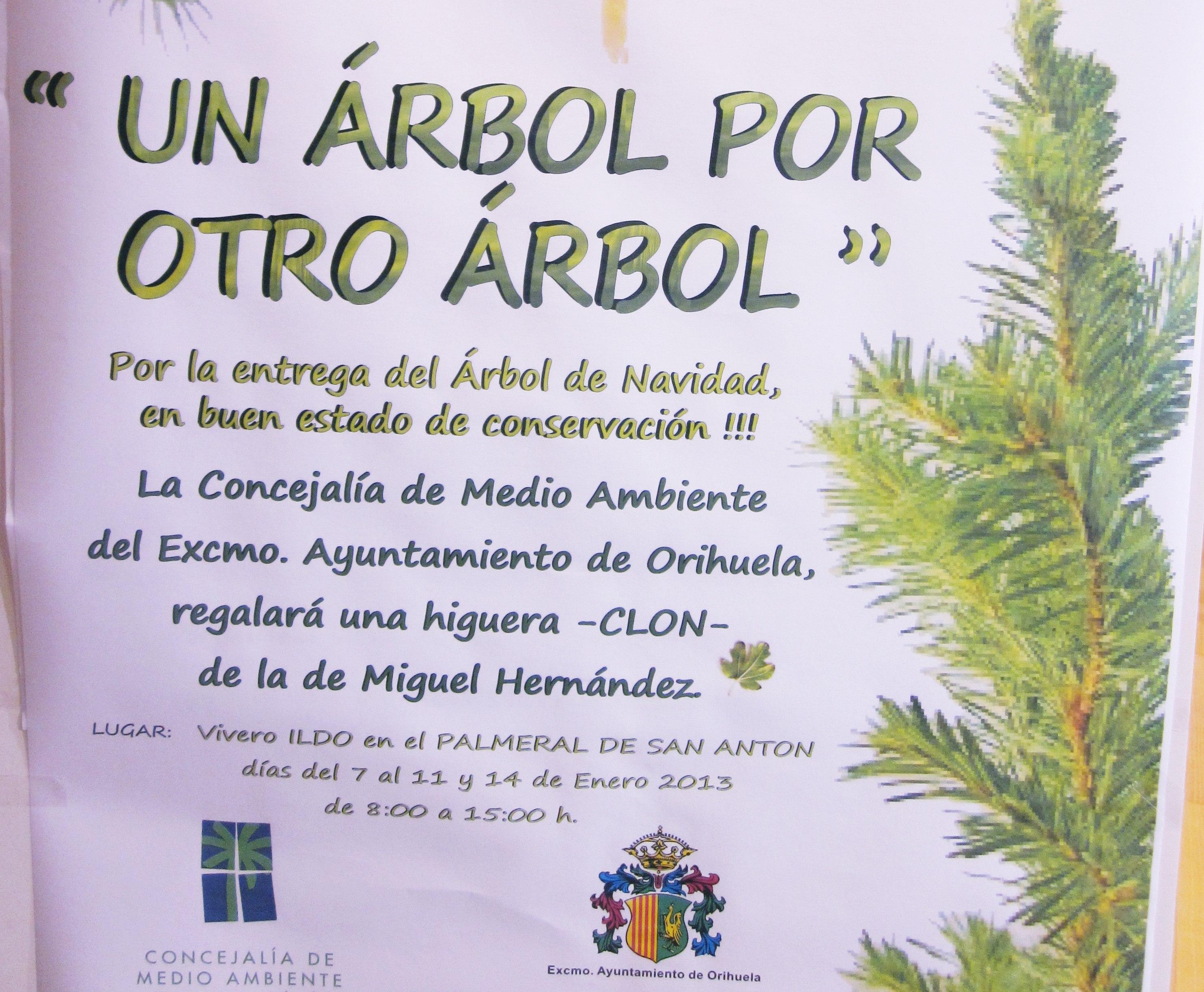 Medioambiente ofrece una higuera idéntica a la de Miguel Hernández a cambio de los abetos navideños en buen estado