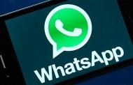 Redován ofrece un servicio para contactar por whatsapp, email y teléfono con sus concejales