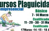 El Ayuntamiento de Bigastro ofrece 30 plazas gratuitas para cursos de plaguicidas