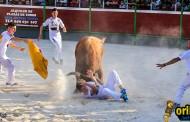 Benejúzar comienza la II Feria Taurina el sábado 3 con un concurso de recortadores